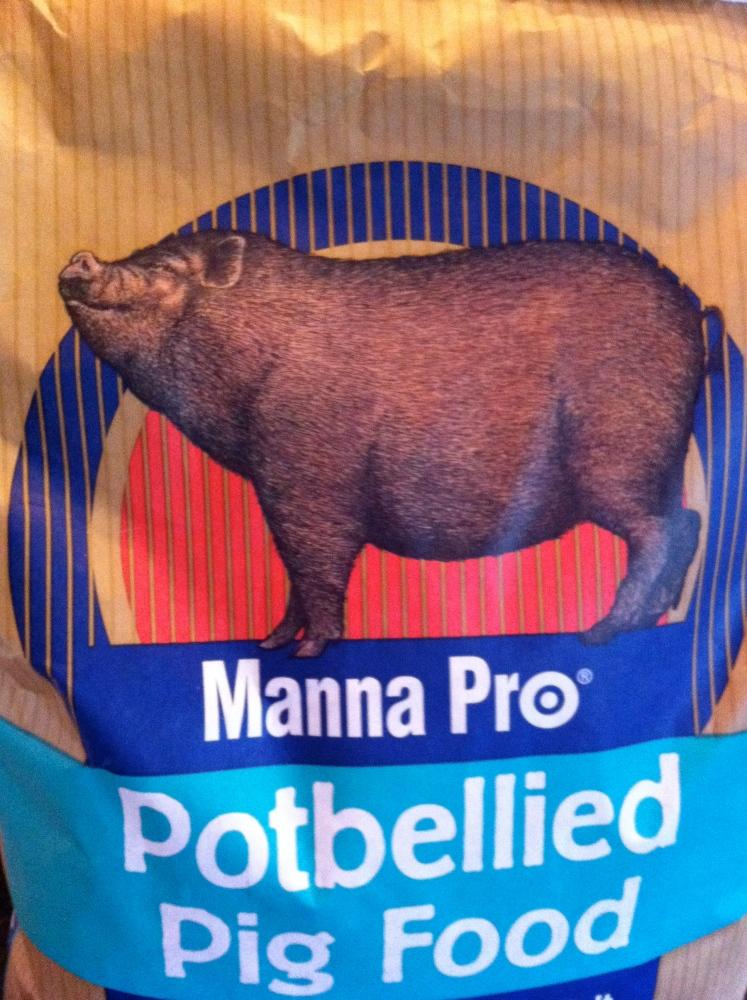 Piggie FAQs (3/6)