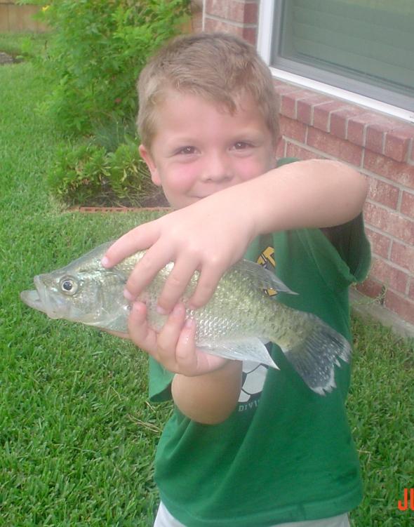 P's fish 003